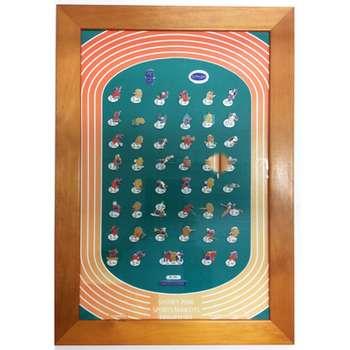 Sydney 2000 Sports Mascots Framed Pin Set